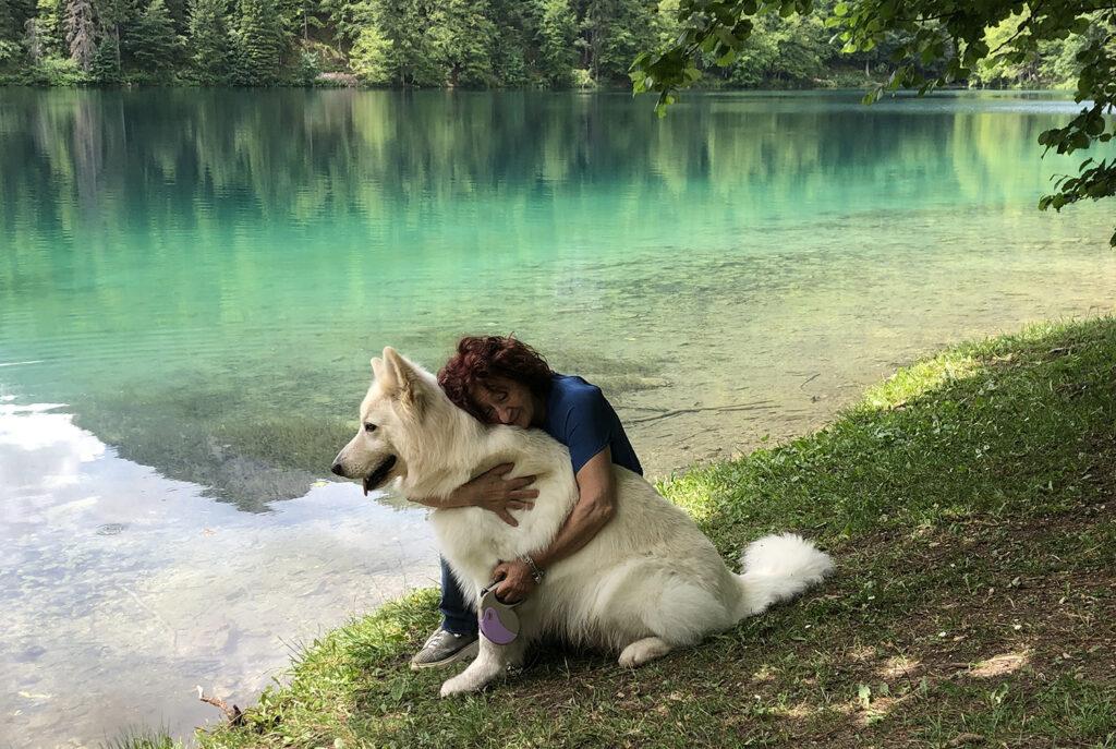 pastore svizzero bianco carattere, pastore svizzero bianco allevamento Lungoresina, Lungoresina Toruk Makto, laghi di Fusine,